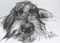 Valerie Davide Dogs   ... valerie davide prints greetings cards and merchandise click here dogs