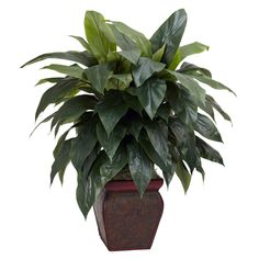 Cordyline Silk Plant with Decorative Vase - Overstock™ Shopping - Great Deals on Nearly Natural Silk Plants