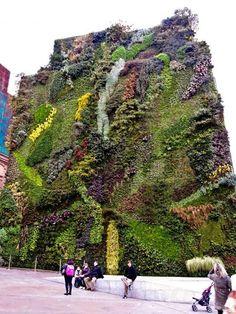 Jardín vertical en una de las fachadas del Edificio Caixaforum  Madrid , diseño sostenible. #Esmadeco.