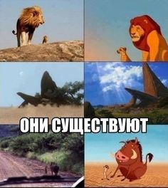 Wall | VK Disney Pictures, Cool Pictures, Funny Pictures, Disney Memes, Disney Cartoons, Hello Memes, Russian Humor, Funny Owls, Cute Disney Wallpaper