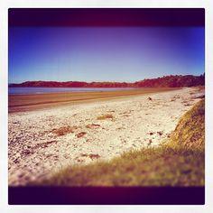 Onetangi Beach Waiheke Island, Auckland, New Zealand, Beaches, Water, Outdoor, Instagram, Gripe Water, Outdoors