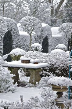 """Topiary under snow takes on a new beauty* """"And when wind and winter harden All the loveless land, It will whisper of the garden . Winter Szenen, I Love Winter, Winter Magic, Winter Time, Winter Christmas, Magic Snow, Snowy Day, Snow Scenes, Winter Beauty"""