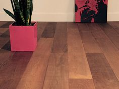 The Fine Sawn Collection - Olde Dutch Flooring from DuChateau