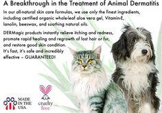 Dog Skin Problems | Dog Hot Spots | DERMagic All Natural Skin Care