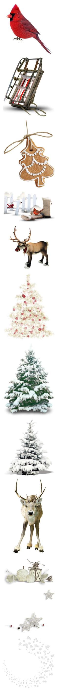 """Christmas Items #3"" by moomoofan1972 ❤ liked on Polyvore featuring birds, animals, red, christmas, winter, xmas, snow, fillers, food and ornaments"