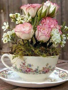Sweet tea cup !