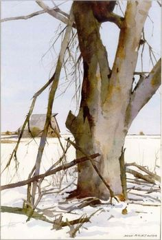 Watercolor of a tree by Dean Mitchell