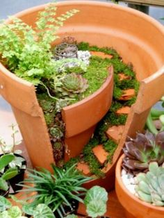 Fairy garden! @Alison Duever I know what to do with my broken pots!!!!!