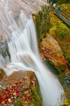 The Flume Gorge in Franconia State Park, New Hampshire photo by Eric Nixon