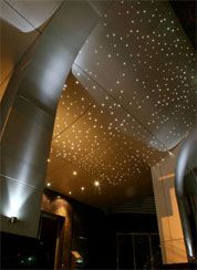 Fiber optic lights...starry