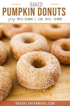 Baked Pumpkin Donuts coated in cinnamon sugar! This easy homemade recipe makes 1 dozen soft, fluffy donuts that are ready in 30 minutes! One of the BEST Fall Pumpkin dessert recipes! Pumpkin Coffee Cakes, Sugar Pumpkin, Baked Pumpkin, Pumpkin Dessert, Pumpkin Spice, Baked Donut Recipes, Baked Donuts, Doughnuts, Easy Homemade Recipes