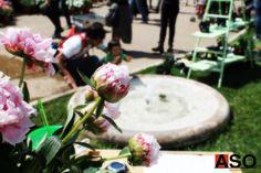 Festival del verde e del paesaggio 2015