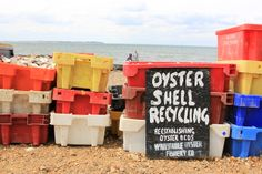 You will see piles of these lovely Oyster shells on your travels around Whitstable, all waiting to be recycled! Oyster Bed, Stuff To Do, Things To Do, Oyster Shells, Travel Around, Oysters, Traveling By Yourself, Waiting, Recycling