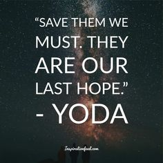 Yoda is one of the most well-known and beloved characters in the Star Wars franchise. Check out these wise Yoda quotes. Most Powerful Jedi, Famous Vampires, Yoda Quotes, Beloved Movie, Running Jokes, The Empire Strikes Back, The Grandmaster, Greed, Awakening