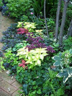 Pergola With Retractable Canopy Kit Key: 6629113156 Metal Pergola, Diy Pergola, Small Backyard Gardens, Backyard Landscaping, Green Garden, Shade Garden, Beautiful Gardens, Beautiful Flowers, Potted Plants Patio