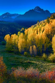 Colorado Fall Colors - Fall colors in the southwest quadrant of Colorado (USA)