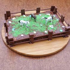 Ich bin schon so gespannt, wie das Mädchen auf diesen Kuchen reagieren wird  Die Basis ist ein Schoko-Haselnuss-Kuchen, den ich mit Kuvertüre bestrichen und mit grünen Perlen dekoriert habe  Dazu noch ein paar Blumen und ein Zaun aus Kinderschokolade und Mikado und schon ist die Pferdekoppel fertig  #kindergeburtstag #lenawird5 #mehraufsnapchat #pferde #mottoparty #pferdekoppel #kuchen #schokokuchen