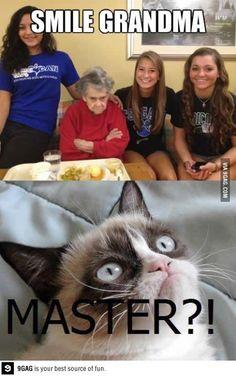 Oh master! I love Grumpy Cat!