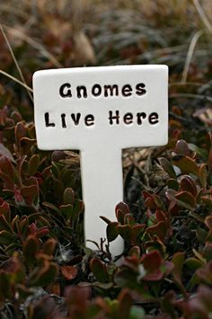 Gnomes Live Here - Little Sign Marker Stake for Garden, Plant Pot or Terrarium - Custom Made to Order. $6.50, via Etsy.