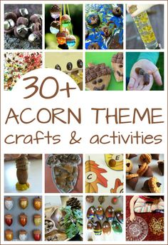 Acorn crafts and act