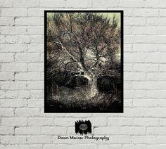 Energy Tree Art Print Fine Art, Tree Artwork Print, Tree Painting Prints, Contemporary Digital Painting, Energy Tree, FREE SHIPPING by DawnMercerPhoto on Etsy