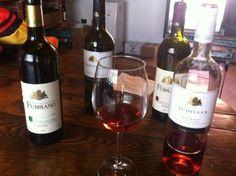 Variedades de vino que probamos en la Fattoria di Fubbiano