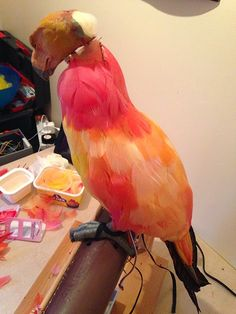 """[ 10 Digits ]: The Making of My """"Fawkes the Phoenix"""" Puppet - Part 2- This is AMAZING!"""