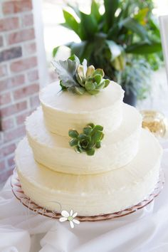Another image of a simple white textured cake baked by Thrive Cafe, Savannah, Ga. And photographed by Stayce!