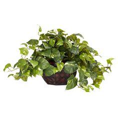 Pothos w/Decorative Planter