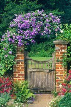 gated garden entrance covered in flowering clematis.
