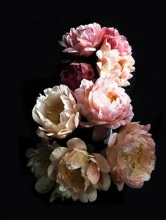 greige peonies at The Abbott KC