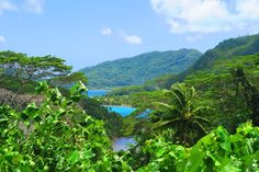 roadtrip in Huahine French Polynesia