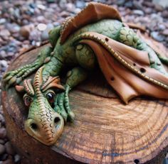 dragon on a log