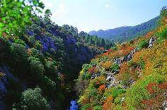 El Parque Natural de las Sierras de Cazorla, Segura y Las Villas (Jaén) es el mayor espacio protegido de España y el segundo de Europa / Natural Park Sierras de Cazorla, Segura y Las Villas (Jaén) is the biggest protected natural area in Spain and the second one in Europe