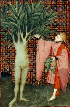 Daphne, half-woman and half- laurel tree with Apollo The Book of the Queen, c 1410-c 1414, Harley MS 4431, f. 134v, The British Library. http://www.bl.uk/manuscripts/Viewer.aspx?ref=harley_ms_4431_f134v