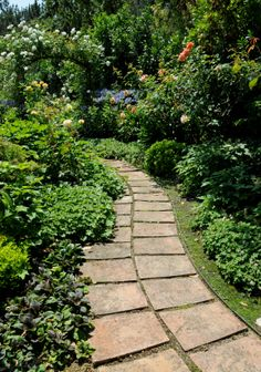 walkways and pathways ideas | Design a Stepping Stone Path; Ideas, Images, Tips and Advice