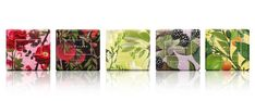 Jo Malone London soap range designed my Michael Angove. All have hidden insects within the design