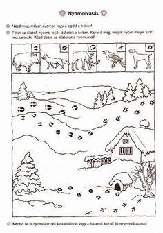 Preschool Coloring Pages, Preschool Worksheets, Coloring For Kids, Preschool Activities, Animal Activities For Kids, Winter Activities, Thema Winter Im Kindergarten, Feeding Birds In Winter, Bears Preschool