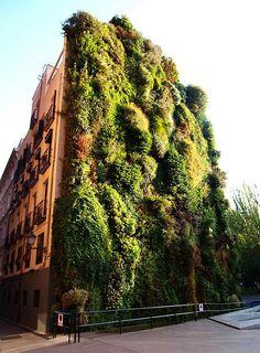 Vertical Garden | Madrid, Caixa Forum