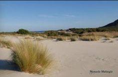 Capo comino dune (Siniscola)