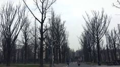University of Electronic Science and Technology of China, Chengdu, Sichuan, China