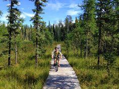 Family Adventures in the Canadian Rockies: Crimson Lake Provincial Park - Hidden Gem in Alberta Campgrounds Bike Trails, Biking, Alberta Travel, Trail Maps, Canadian Rockies, Family Adventure, Canada Travel, Calgary, Time Travel