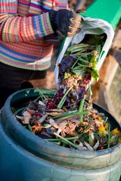 Composting Article   What you put in your compost is the most important factor in whether it will keep cookin' at a decent clip and behave itself — i.e., not cause a stink. It will help you get fertilizer in about a month or two vs. a season or even a year. You want happy micro-organisms in your compost that hungrily transform your kitchen scraps into garden goodies.