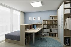 Bedroom & home office combo- divided with bookcase.