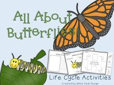 Spring is here! Butterflies are an awesome way to integrate science into your reading block. This product includes ways to extend knowledge about butterflies. Included: Vocabulary Cards Life Cycle Poster Differentiated Life Cycle Worksheets Label the parts of a Caterpillar Butterfly Life Cycle, Vocabulary Cards, Spring Is Here, Differentiation, Life Cycles, Caterpillar, Worksheets, Butterflies, Label