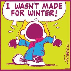 No I was not made for winter...I hate SNOW..I need to move some place warm and tropical.