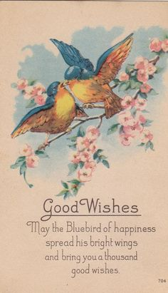 Blue Bird of Happiness- Good Wishes- Vintage Postcard- Unused Vintage Greeting Cards, Vintage Ephemera, Vintage Paper, Vintage Postcards, Images Vintage, Vintage Pictures, Illustrations, Beautiful Birds, Pretty Birds