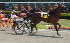 Freehold Raceway, the nation's oldest and fastest daytime half mile harness racing track.