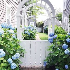 90 Gorgeous Spring Garden Landscaping for Front Yard and Backyard Ideas - DoitDecor Hortensia Hydrangea, Hydrangea Garden, Blue Hydrangea, Hydrangeas, Garden Cottage, Home And Garden, Spring Garden, White Gardens, Garden Gates