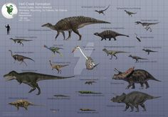 Hell Creek Formation Fauna by PaleoGuy. Hell Creek is where you can find dinosaur bones with the soft tissues intact enough to get DNA samples from. Dinosaur Bones, Dinosaur Fossils, Dinosaur Art, Reptiles, Mammals, Dinosaurs Live, Extinct Animals, Prehistoric Creatures, Jurassic World